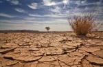 desert-1108-lg